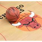 Magnetic NBA Basketball (Orange)