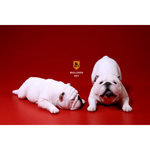 British Bulldog Dogs Set (White)