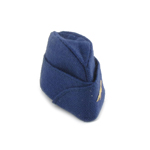 Armée de l'Air Forage Cap (Blue)